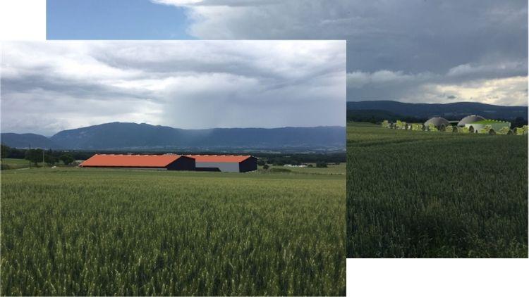 Intégration au paysage du méthaniseur Green Gas Viry (74580)
